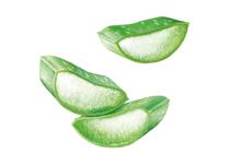 Дневни кремове за лице » Универсален крем Nivea Care Soothing Cream
